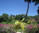 seychelles08